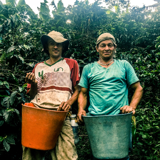 Colombia Specialty Coffee US