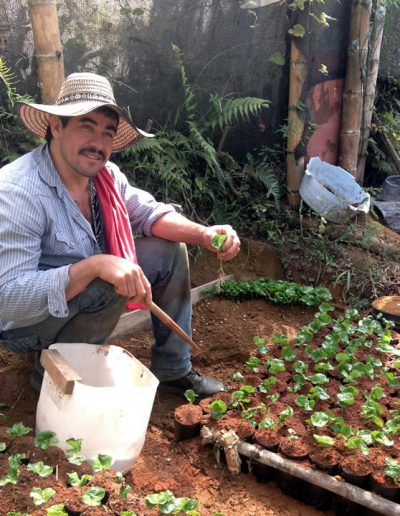 Colombian Coffee Small scale growers